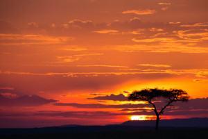 MaasaiMara275_070912